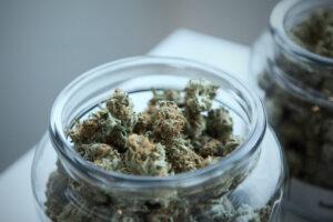 Medicinal Weed