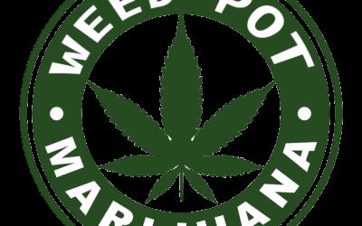 Alabama Recreational Weed Next ?