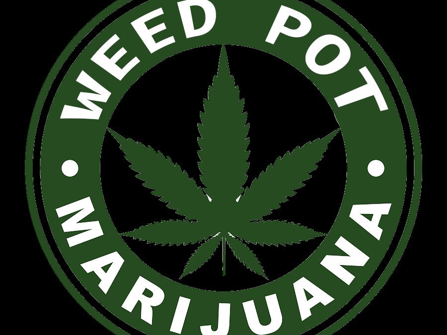 Palm Bay Florida Medical Weed Dispensary Near Me