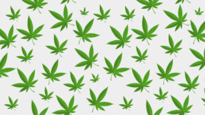 Green Acres Florida Weed Dispensary Store Near Me